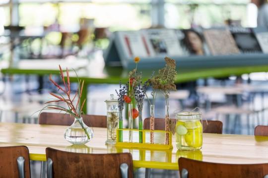 The Pavillion restaurant. Photo: Hans Wilschut