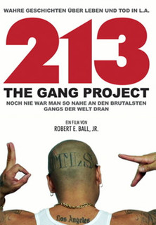 213 - The Gang Project stream