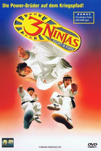 3 Ninjas Fight & Fury stream