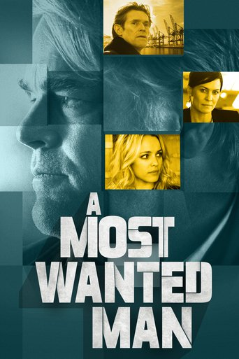A Most Wanted Man Stream