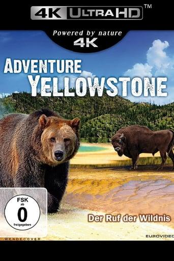 Adventure Yellowstone stream