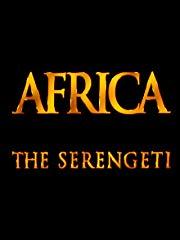 Africa - The Serengeti stream