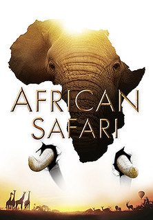 African Safari - stream