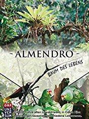 Almendro - Der Baum des Lebens - stream