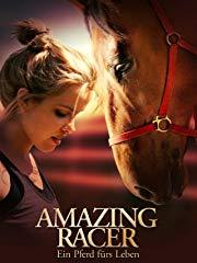 Amazing Racer - Ein Pferd fürs Leben stream