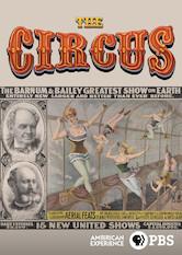 American Experience: Der Zirkus Stream