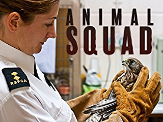 Animal Squad stream