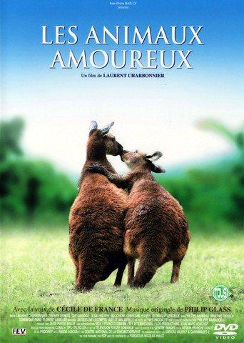 Animals in Love stream