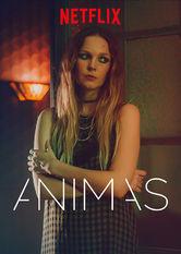 Animas Stream