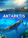Film Antarktis Stream