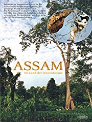 Assam - Im Land der Bienenbäume stream