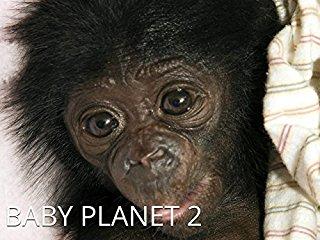 Baby Planet stream