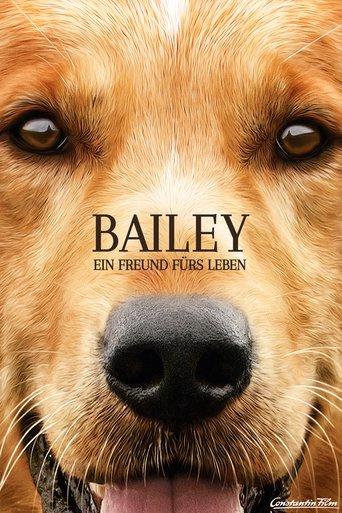 Bailey - Ein Freund fürs Leben stream