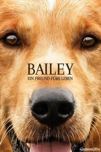 Bailey - Ein Hund kehrt zurück Stream
