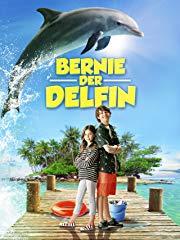 Bernie der Delfin Stream