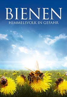 Bienen - Himmelsvolk in Gefahr stream