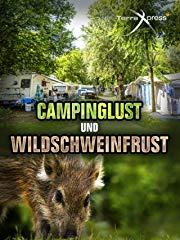 Campinglust und Wildschweinfrust Stream