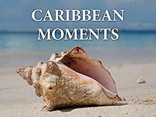 Caribbean Moments - stream