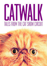 Catwalk: Tales from the Cat Show Circuit - stream
