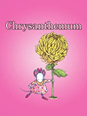 Chrysanthemum Stream
