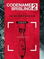 Codename Brisling 2 (Plauen im Bombenkrieg) stream