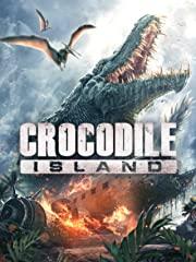 Crocodile Island Stream