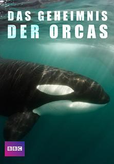 Das Geheimnis der Orcas stream