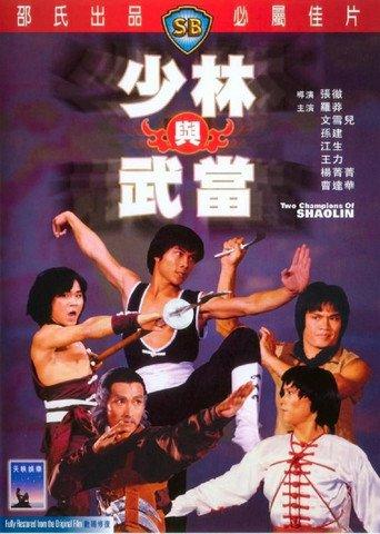 Das Grabmal des Shaolin stream