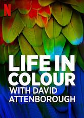 Das Leben in Farbe mit David Attenborough Stream