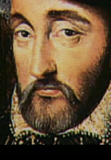 Der Fall Nostradamus - stream