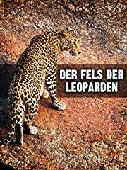 Der Fels der Leoparden stream