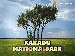 Der Kakadu Nationalpark Stream