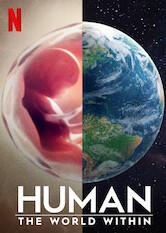 Der Mensch: Innere Welten Stream
