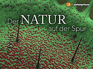 Der Natur auf der Spur - stream