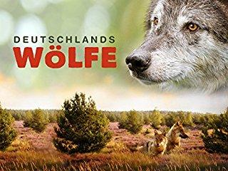Deutschlands Wölfe stream