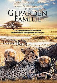 Die Geparden-Familie stream