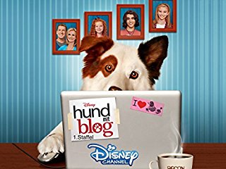 Disney hund mit blog stream
