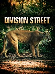 Division Street stream