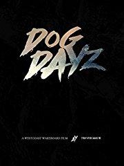 Dog Dayz stream