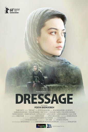 Dressage Stream