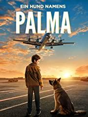 Ein Hund namens Palma Stream