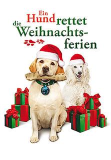 Ein Hund rettet die Weihnachtsferien stream