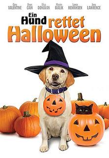 Ein Hund rettet Halloween stream