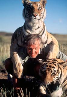 Ein Leben mit wilden Tigern - Teil 2 - stream