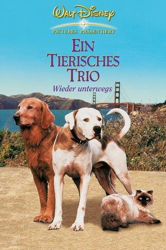 Ein tierisches Trio - Wieder unterwegs stream