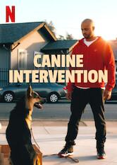 Eine Schule für jeden Hund Stream