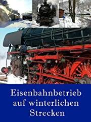 Eisenbahnbetrieb auf winterlichen Strecken stream