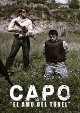 El Capo – Der Herr des Kartells Stream