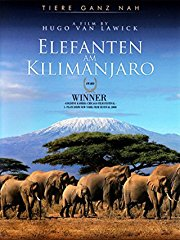 Film Elefanten am Kilimanjaro Stream