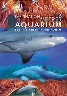 Faszination Meeresaquarium - Eine Reise in die Tiefen unserer Ozeane stream